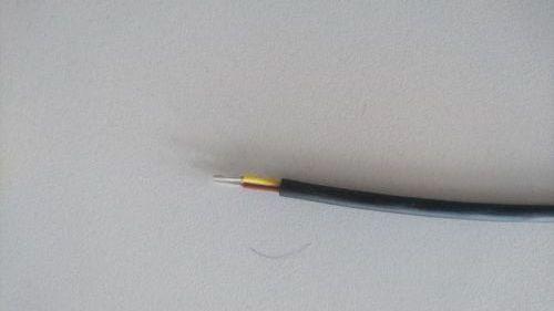 DSC 1600